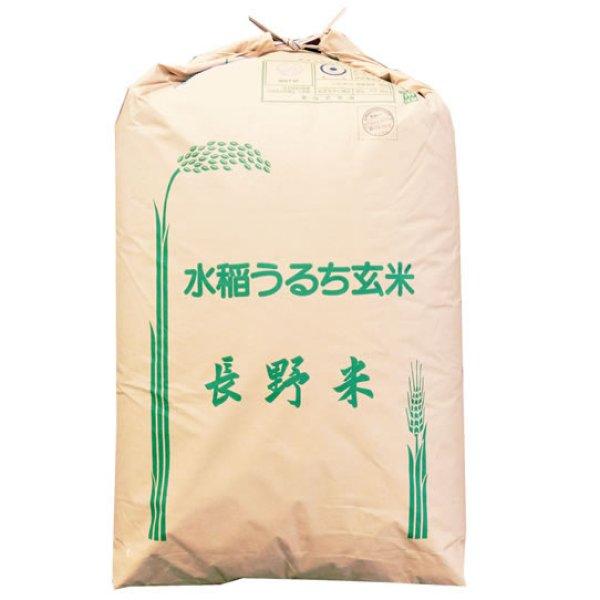 画像1: 【精米料無料】新米 令和2年産 長野県産 ミルキークイーン 1等玄米30kg 白米・無洗米加工保存包装 対応可 (1)